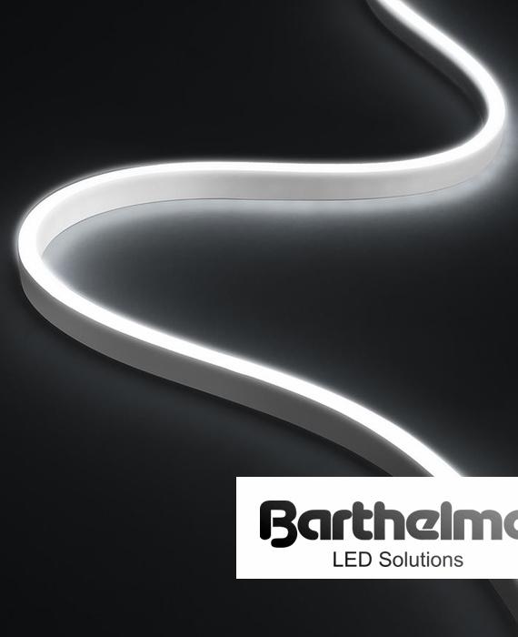 barthelme (1)